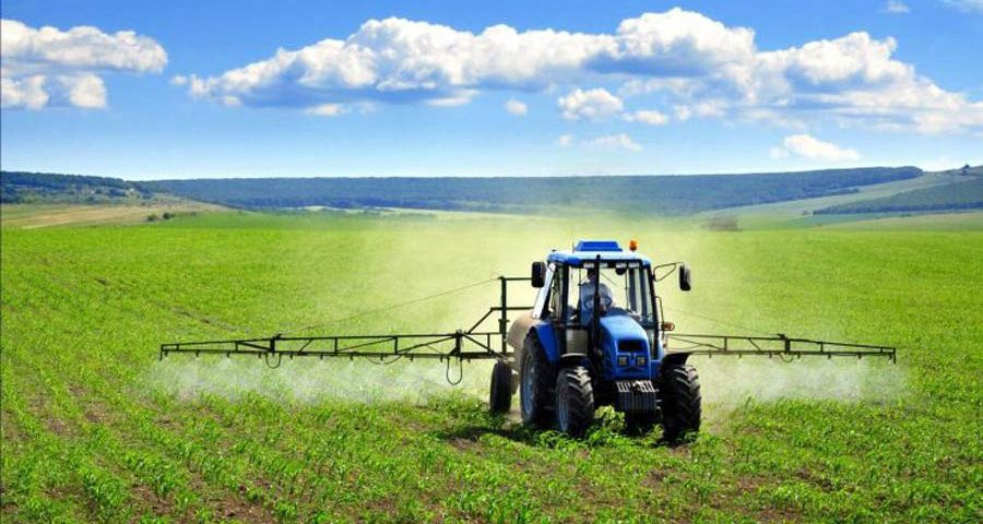 Agricultural products 30% of Iran's total exports