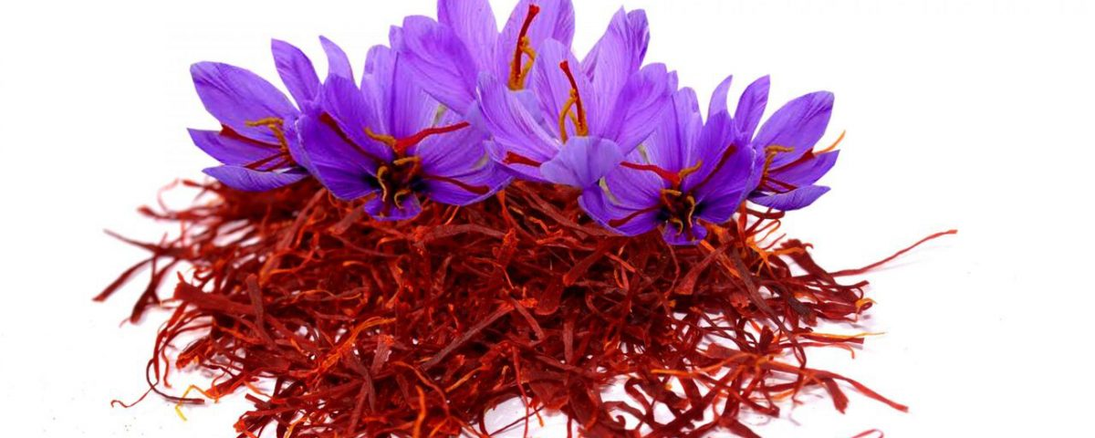 Support marketing development and saffron export leap