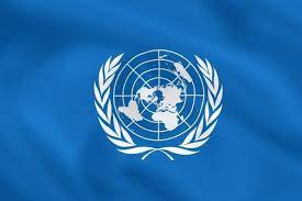 United Nations Development and Trade Council