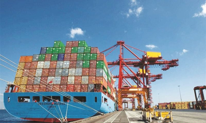 Forecast the growth of agricultural exports in the second quarter of this year