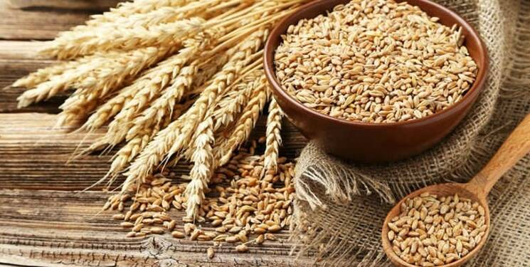 Export duties on several items of agricultural products by the Russian government